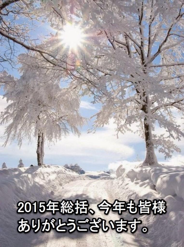 2015年総括 今年も1年無事に年を越す事ができ感謝です。