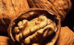 「脳にいい6つの食べ物」 年を重ねるにつれて摂取したい!
